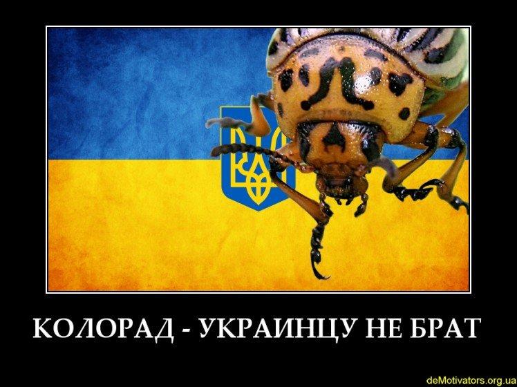 demotivators.org.ua-722499-3