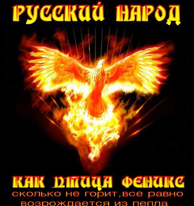 121031001_Phoenix-bird