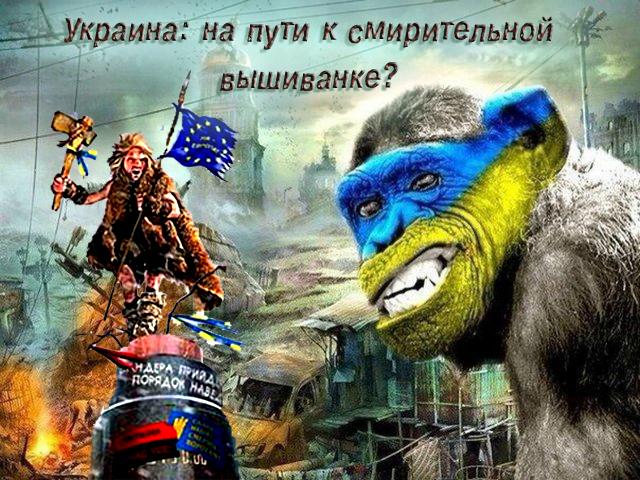 Украина на пути к смирительной вышиванке