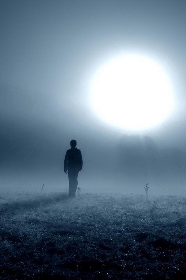 Канцлер в тумане
