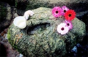Один из известных Ольгиных камней