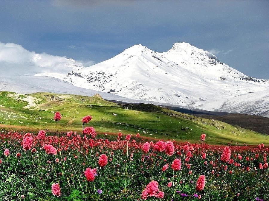 альпиниада