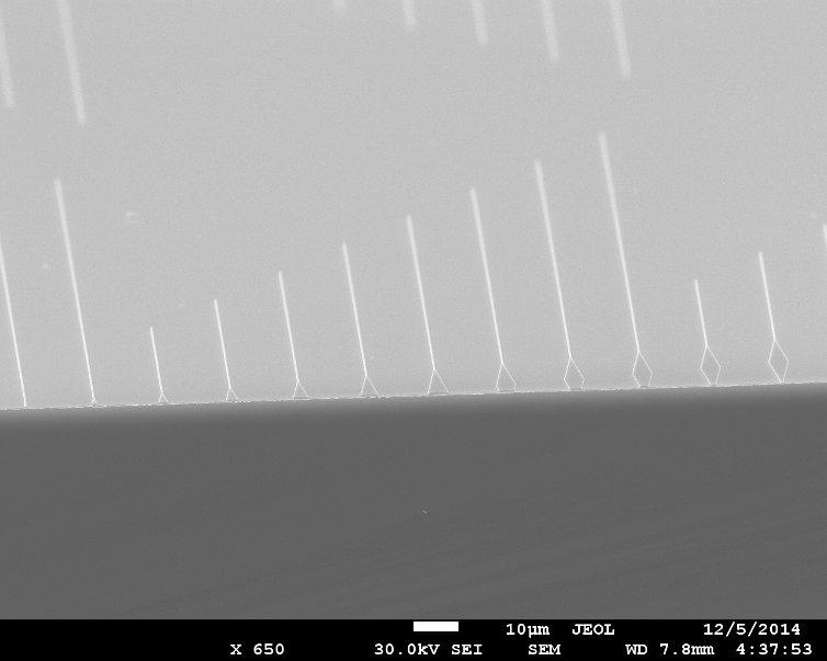 Рис.2. Изображение наноразмерных плазмонных волноводов в растровом электронном микроскопе